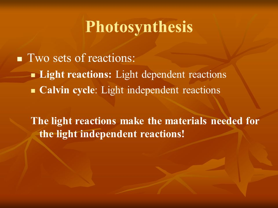 Photosynthesis Two sets of reactions: