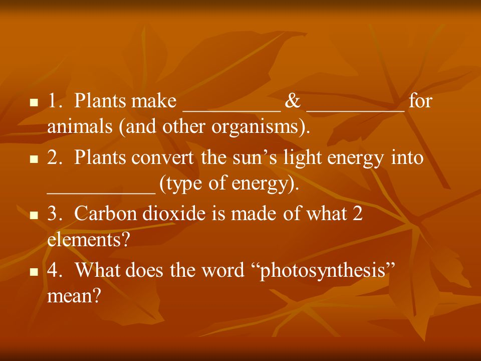 1. Plants make _________ & _________ for animals (and other organisms).