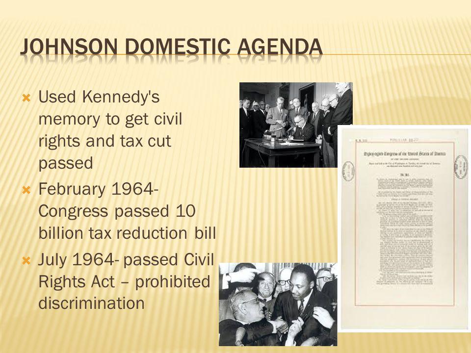 Johnson Domestic Agenda