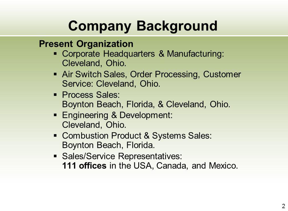 Company Background Present Organization