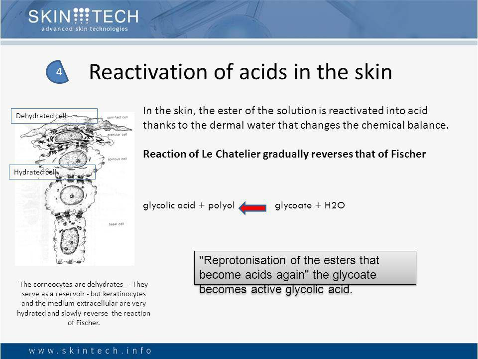 Reactivation of acids in the skin