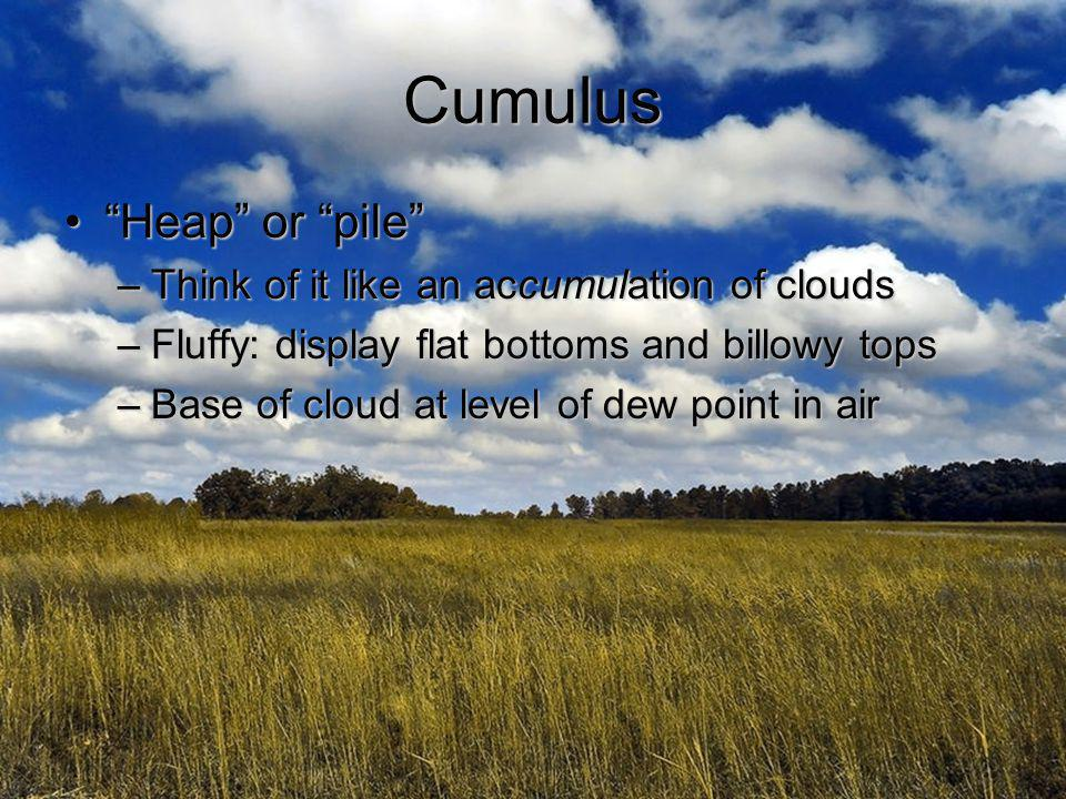 Cumulus Heap or pile Think of it like an accumulation of clouds