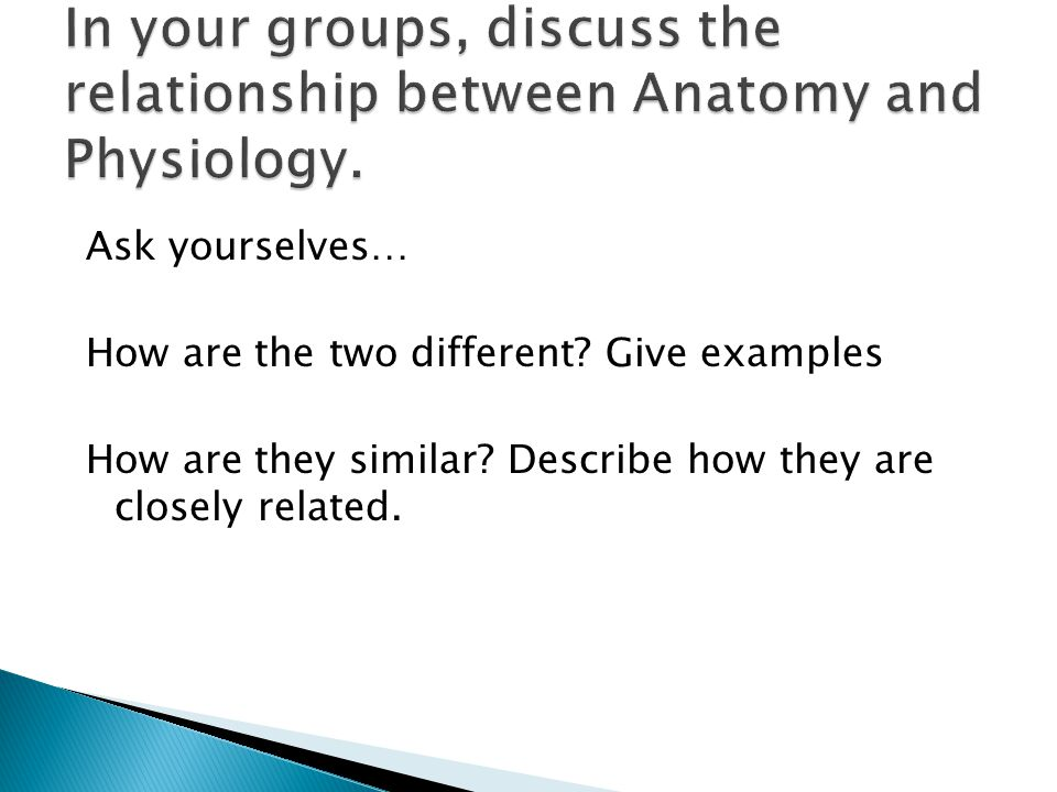 In your groups, discuss the relationship between Anatomy and Physiology.