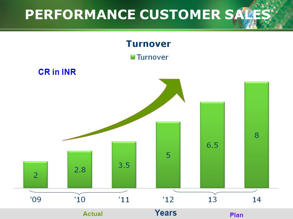 PERFORMANCE CUSTOMER SALES