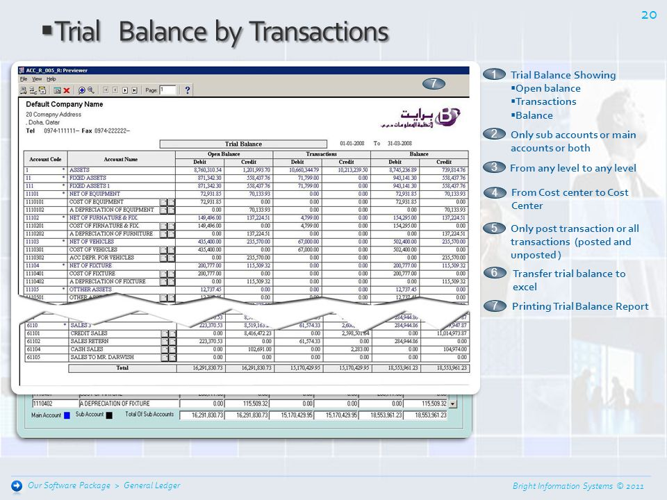 Trial Balance by Transactions