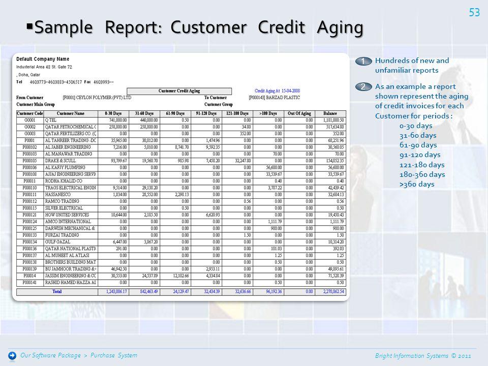Sample Report: Customer Credit Aging