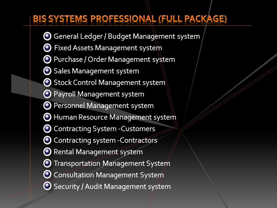 BIS Systems Professional (full package)