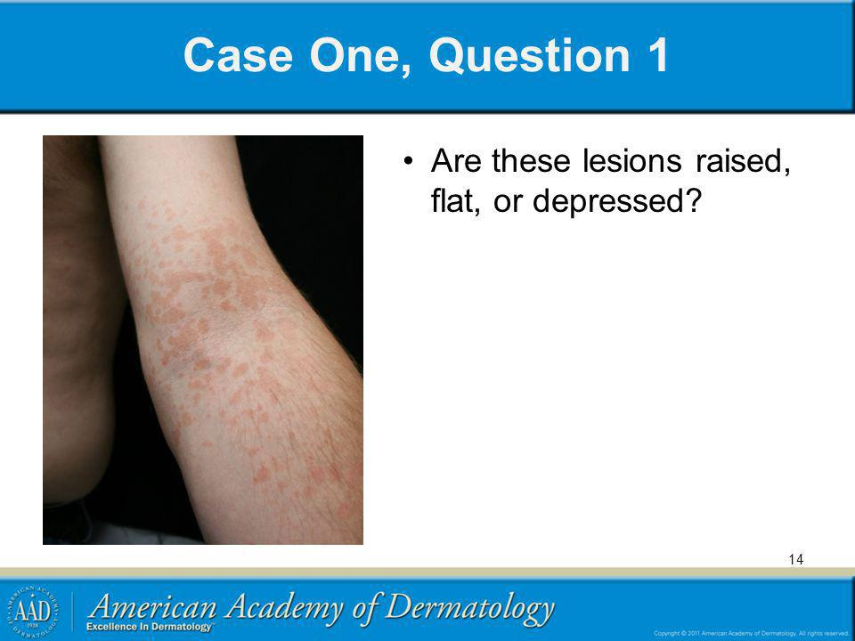 Case One, Question 1 Are these lesions raised, flat, or depressed