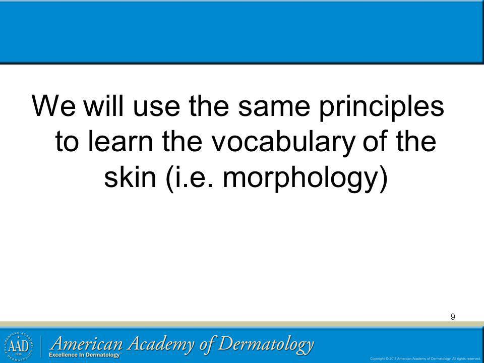 We will use the same principles to learn the vocabulary of the skin (i