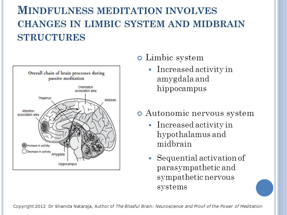 Mindfulness meditation involves changes in limbic system and midbrain structures