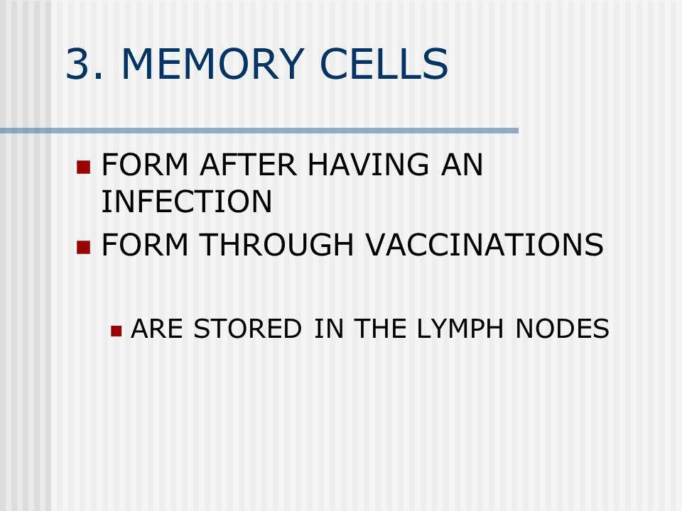 3. MEMORY CELLS FORM AFTER HAVING AN INFECTION