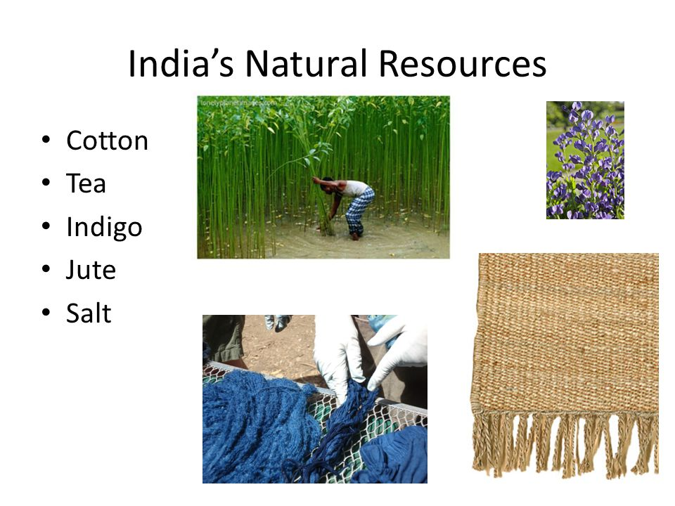India's Natural Resources