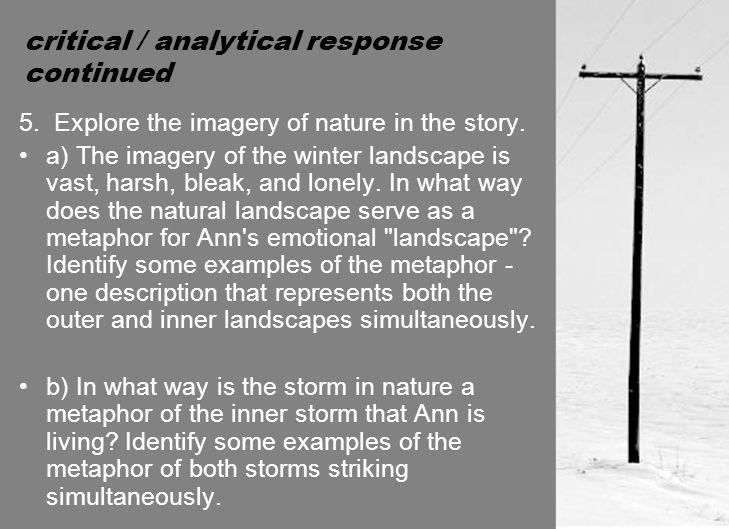 critical / analytical response continued