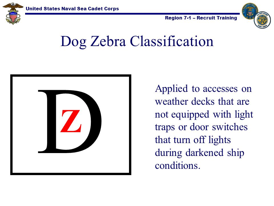 Dog Zebra Classification