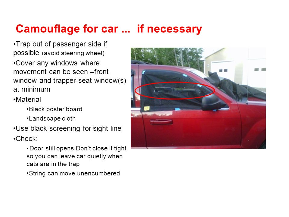 Camouflage for car ... if necessary