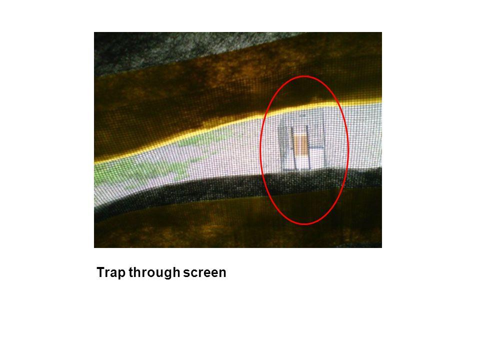 Trap through screen