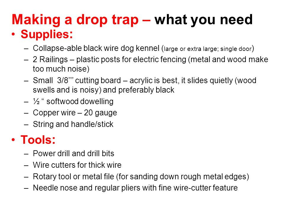 Making a drop trap – what you need