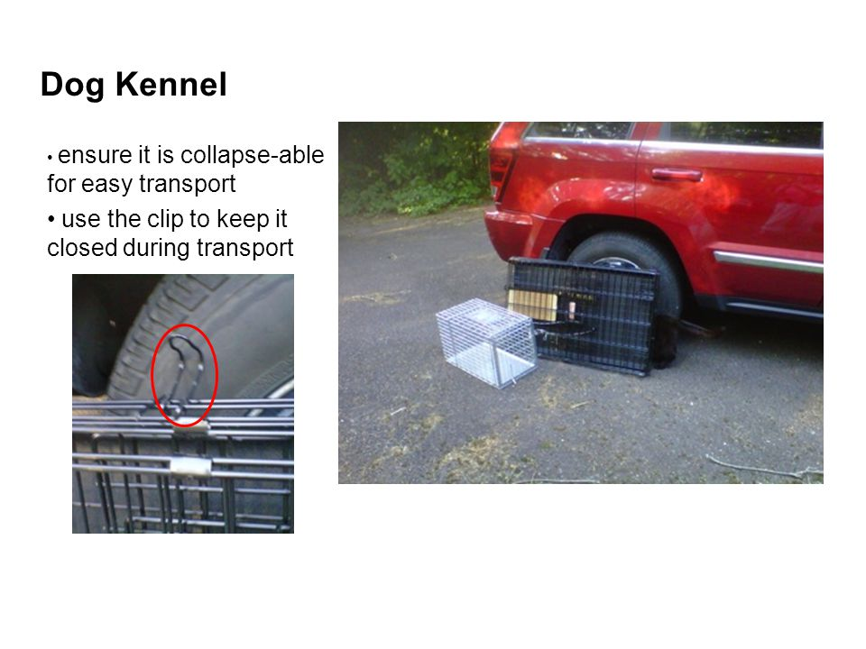 Dog Kennel use the clip to keep it closed during transport