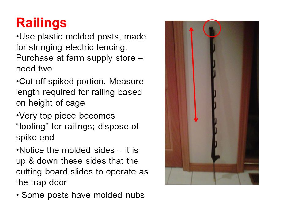 Railings Use plastic molded posts, made for stringing electric fencing. Purchase at farm supply store – need two.