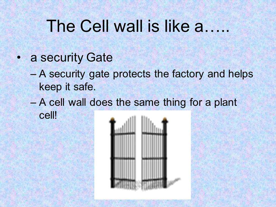 The Cell wall is like a….. a security Gate