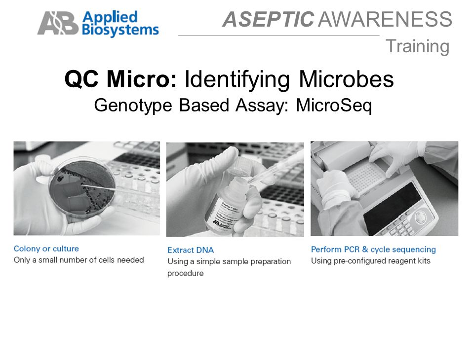 Genotype Based Assay: MicroSeq