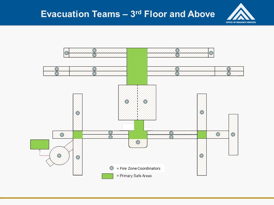 Evacuation Teams – 3rd Floor and Above