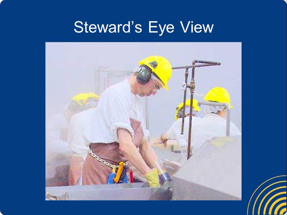 Steward's Eye View A good steward is focused on the members.
