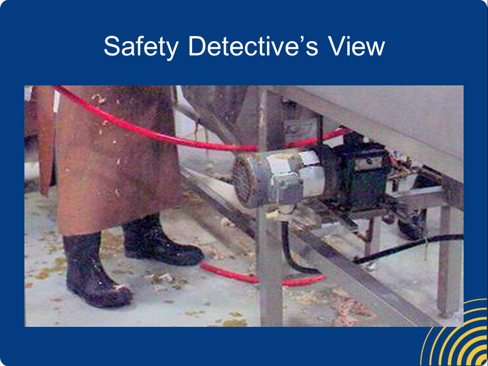 Safety Detective's View