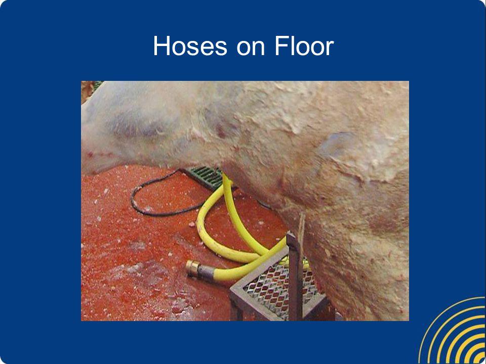 Hoses on Floor