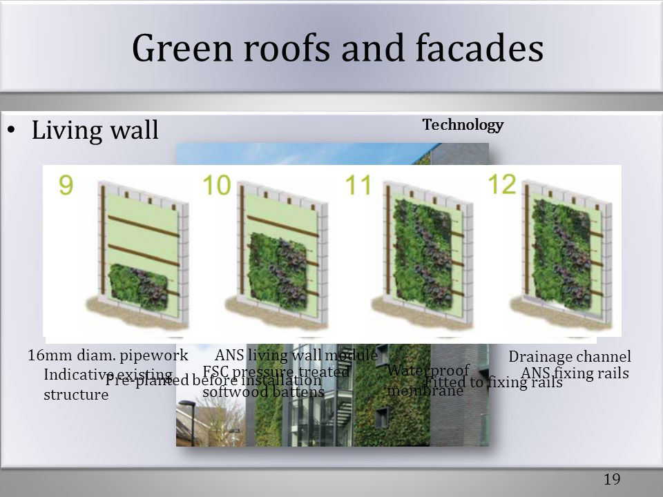 Green roofs and facades