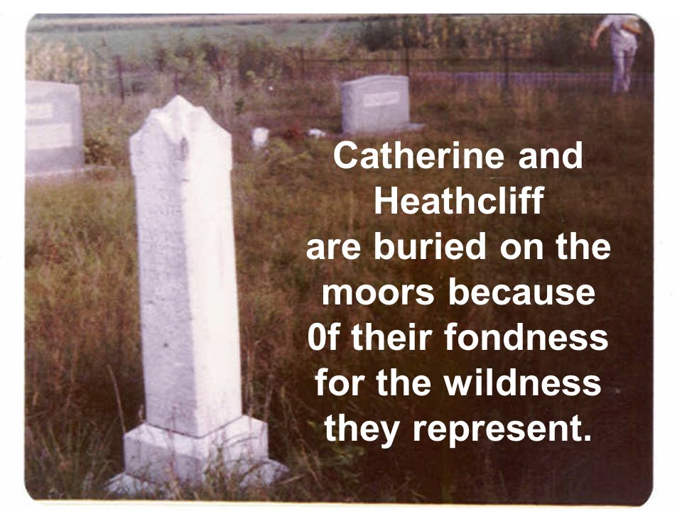 Catherine and Heathcliff are buried on the moors because
