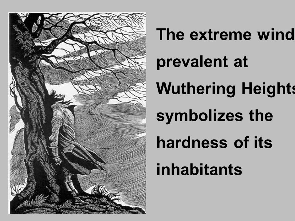 The extreme wind prevalent at Wuthering Heights symbolizes the hardness of its inhabitants