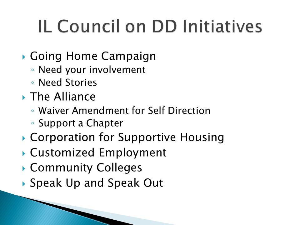 IL Council on DD Initiatives