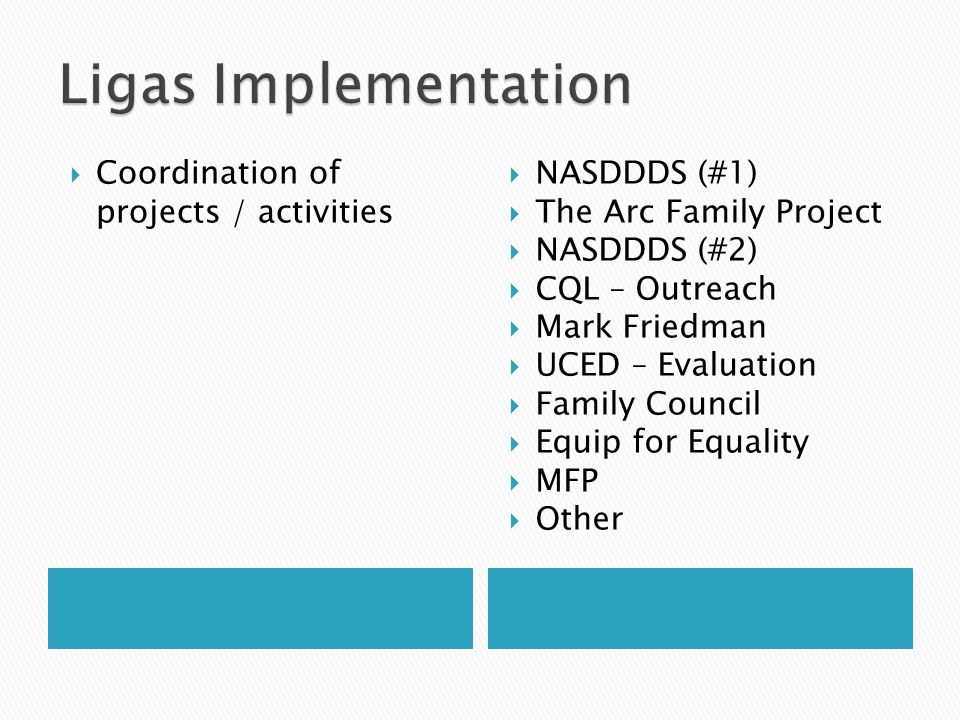 Ligas Implementation Coordination of projects / activities