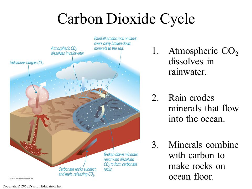 Carbon Dioxide Cycle Atmospheric CO2 dissolves in rainwater.