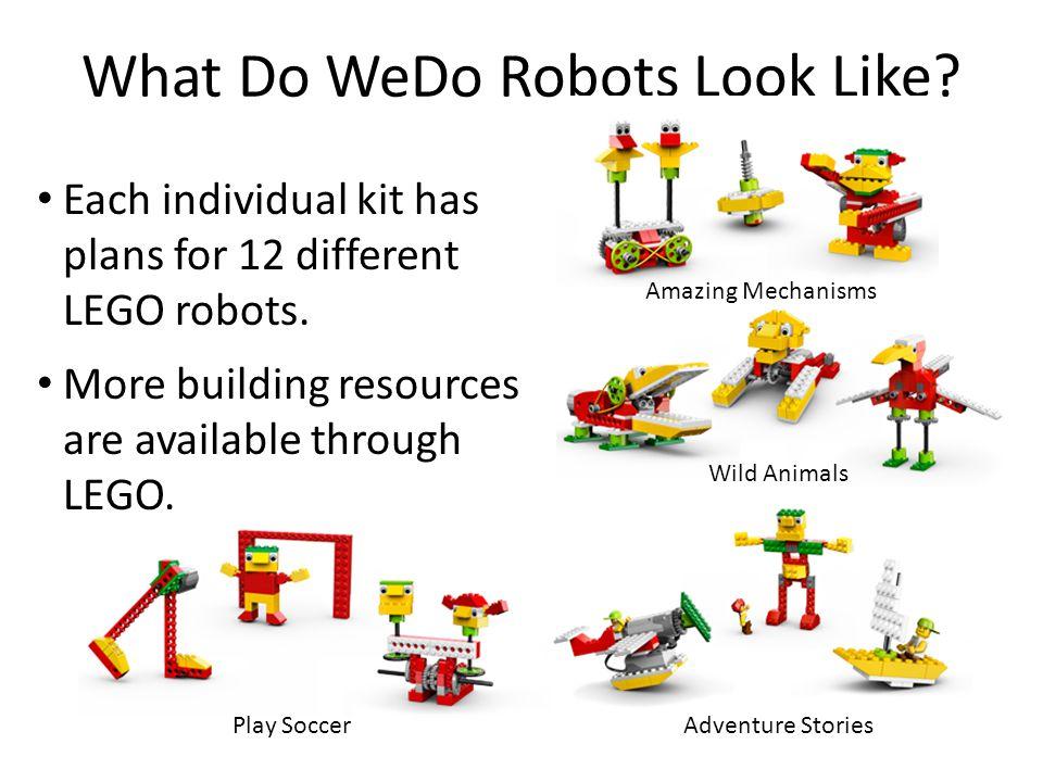 What Do WeDo Robots Look Like