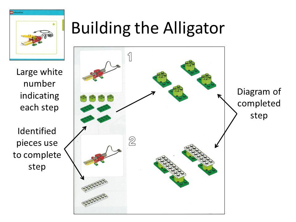 Building the Alligator