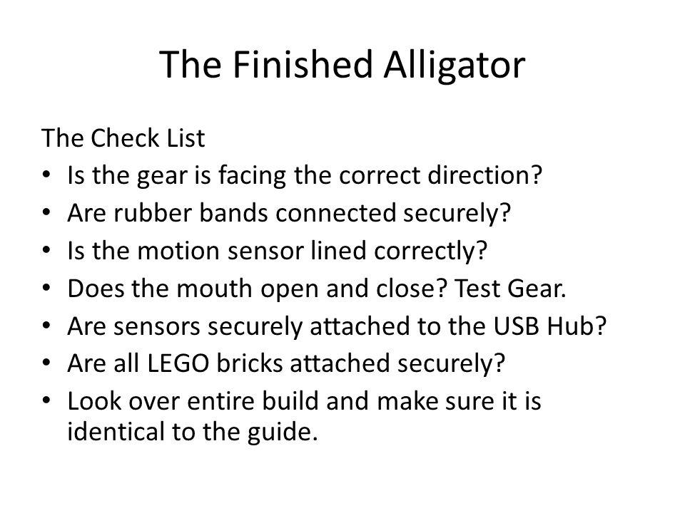 The Finished Alligator