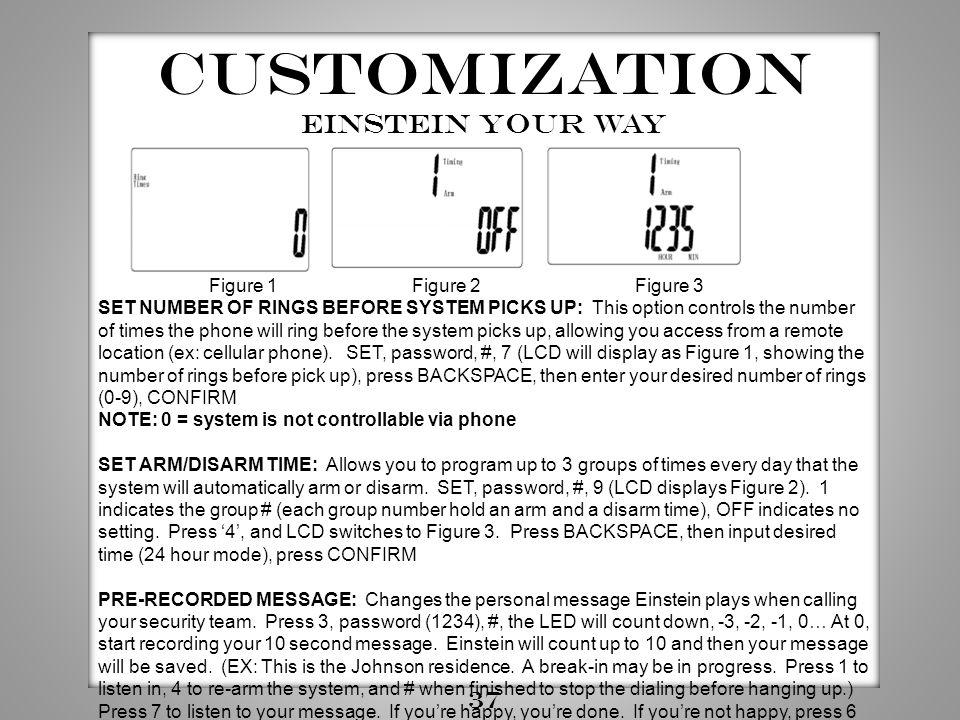 Customization Einstein your way 37 Figure 1 Figure 2 Figure 3