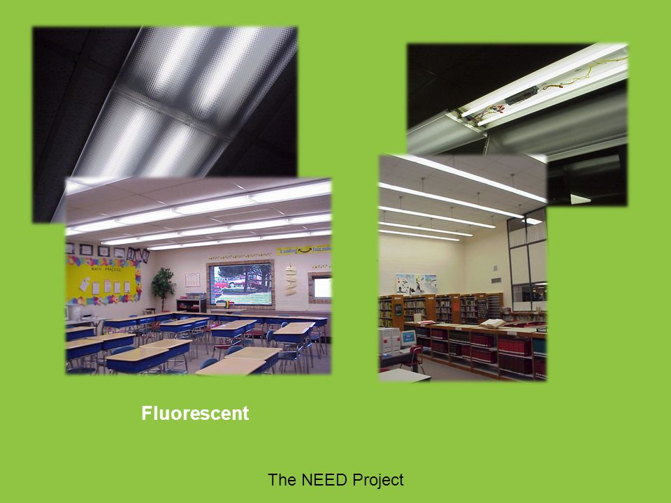 Fluorescent The NEED Project The NEED Project