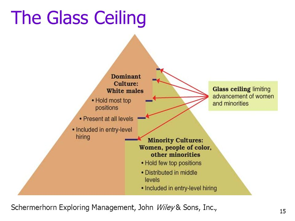 The Glass Ceiling Women, in particular, have made significant inroads into middle management but not into upper management.