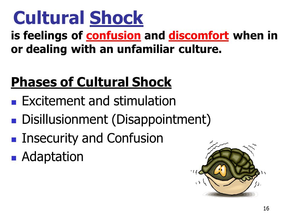 Cultural Shock Phases of Cultural Shock Excitement and stimulation