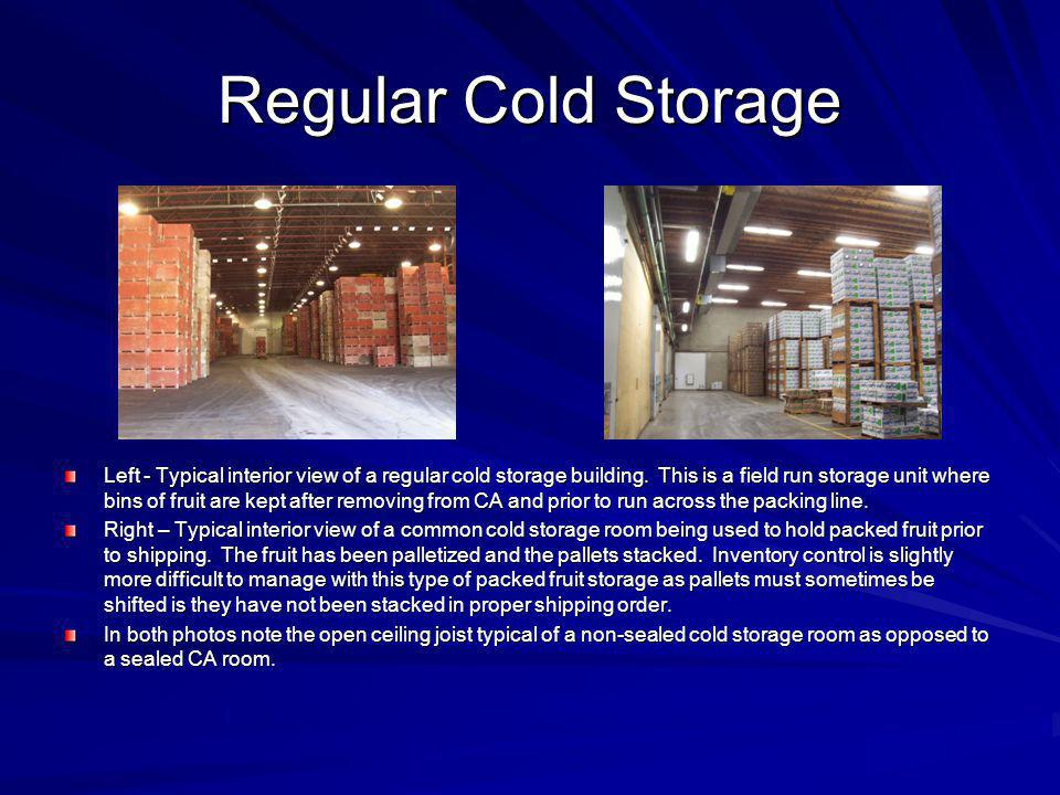 Regular Cold Storage