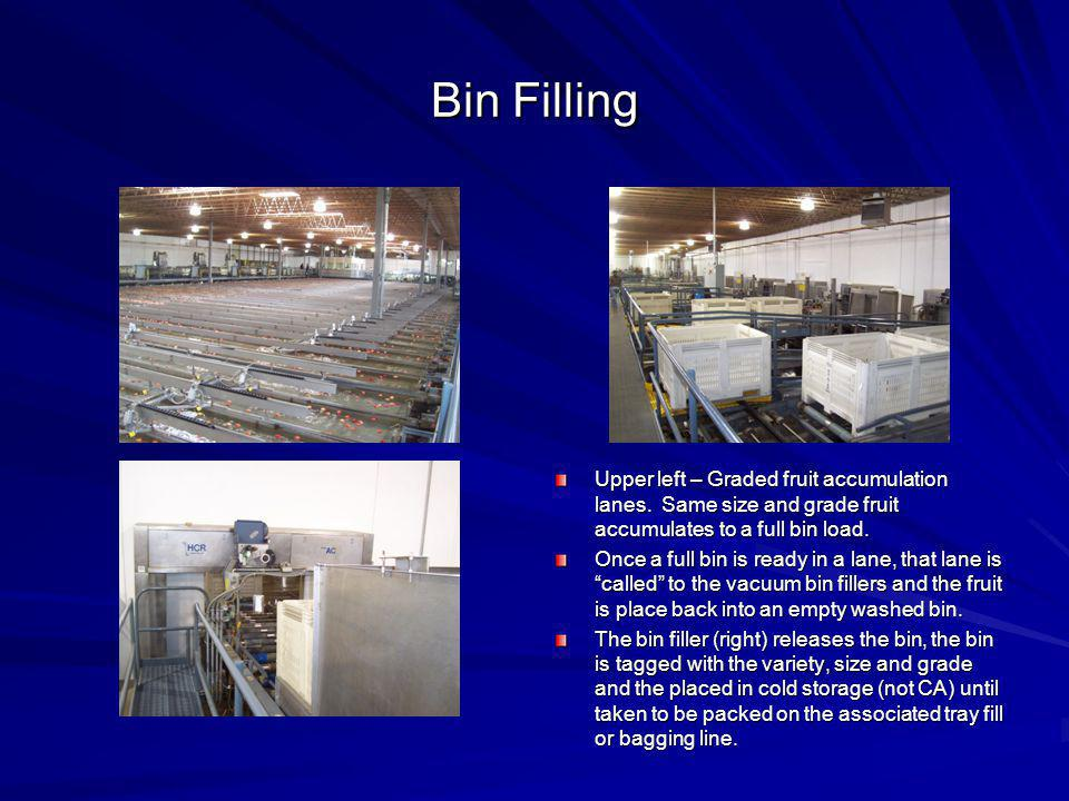 Bin Filling Upper left – Graded fruit accumulation lanes. Same size and grade fruit accumulates to a full bin load.