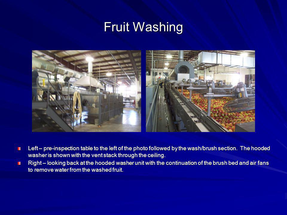 Fruit Washing