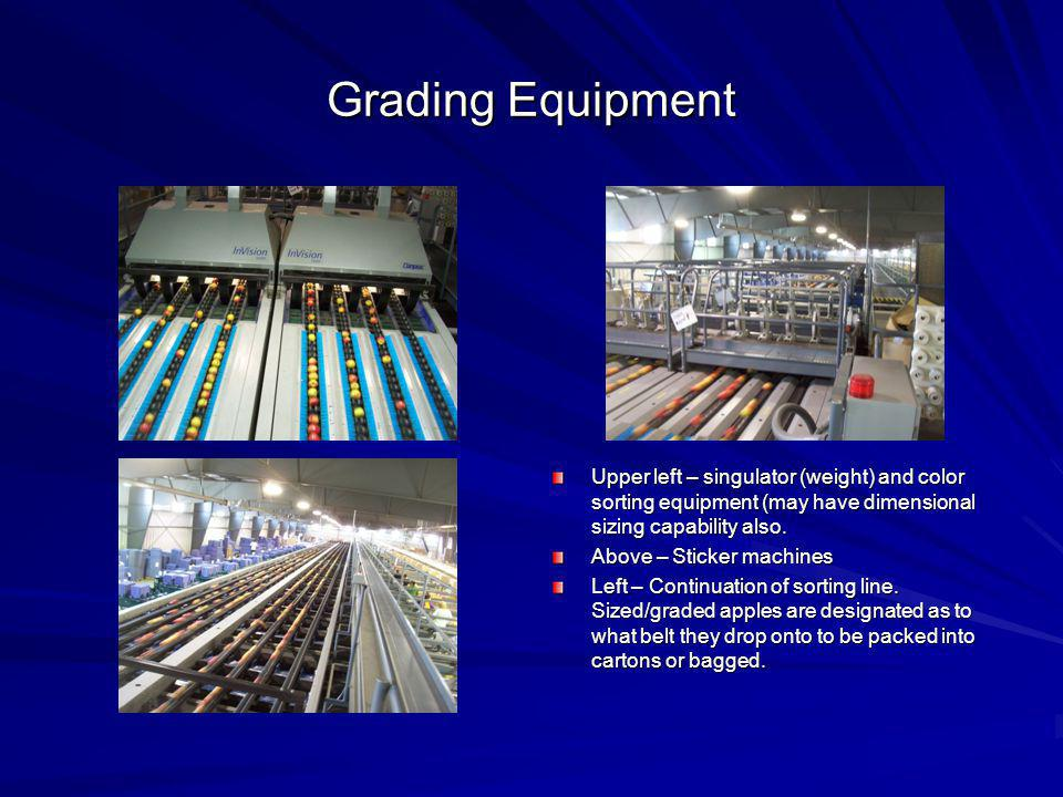 Grading Equipment Upper left – singulator (weight) and color sorting equipment (may have dimensional sizing capability also.