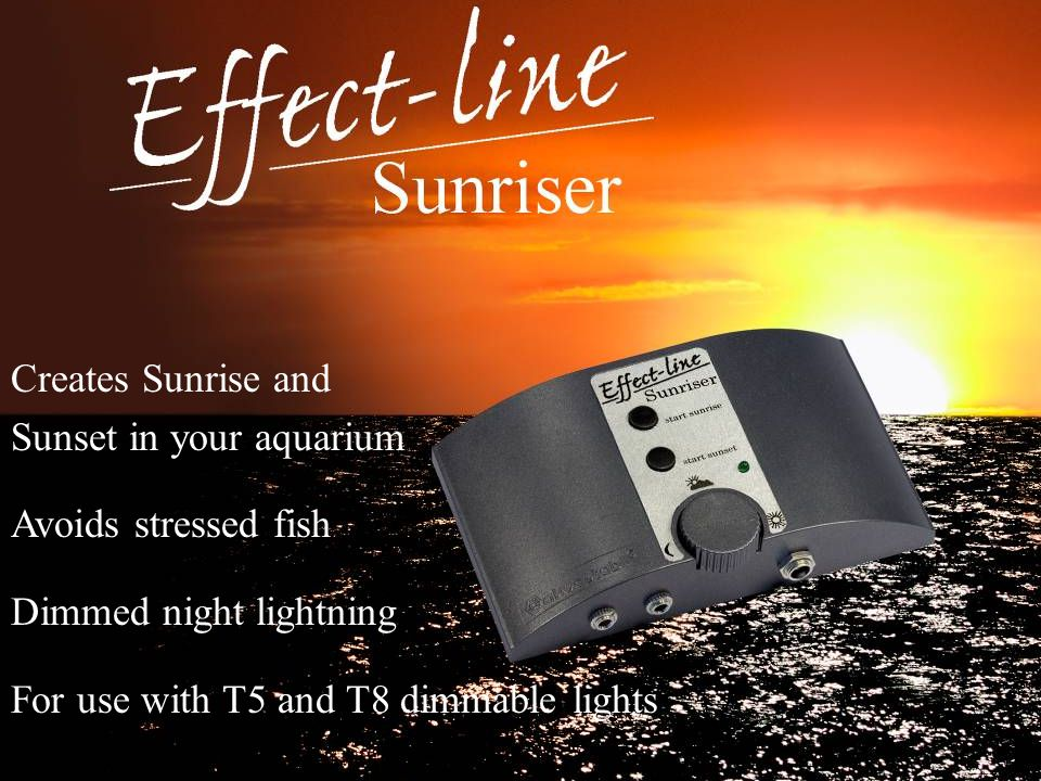 Creates Sunrise and Sunset in your aquarium. Avoids stressed fish.