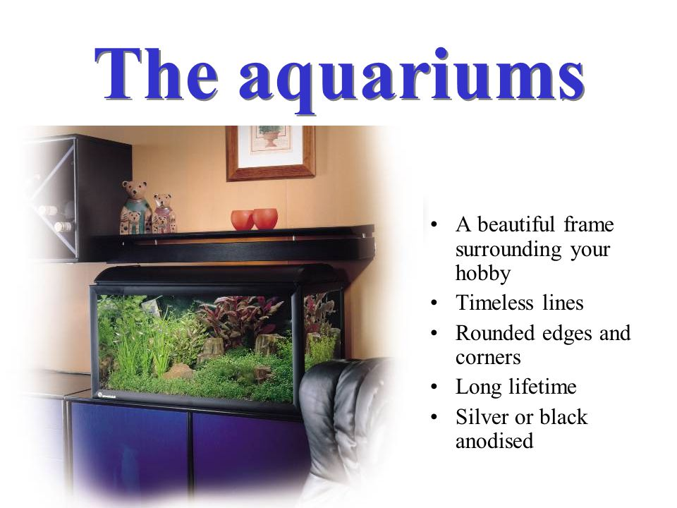 The aquariums A beautiful frame surrounding your hobby Timeless lines