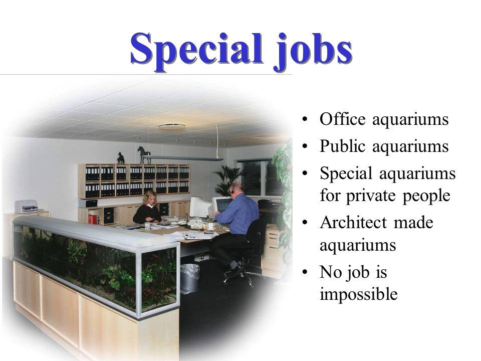 Special jobs Office aquariums Public aquariums