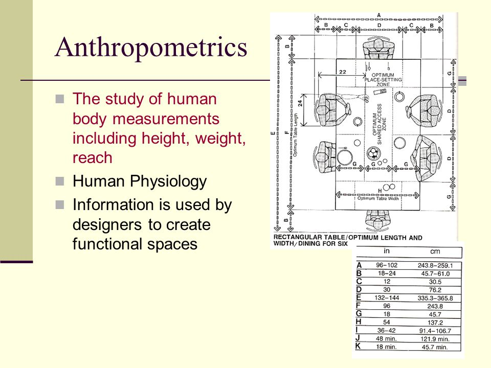 Anthropometrics The study of human body measurements including height, weight, reach. Human Physiology.
